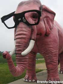That elephant is totes hipster