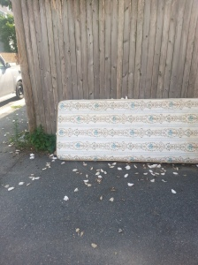 A teenage mattress begins a tough life on the streets.