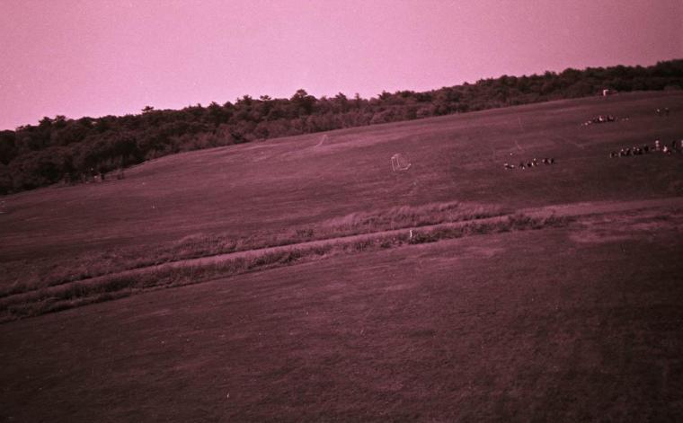 Fuji Superia 400 asa color print film cross-processed with ancient Rodinal 50+1 20C 10 mins